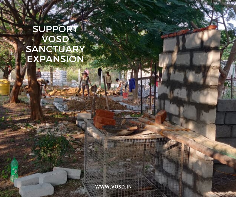 VOSD Sanctuary Expansion 2020